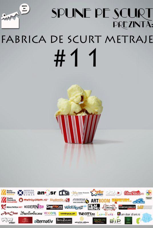 Macheta-FdSM-#11
